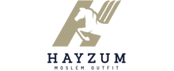 Hayzum-logo